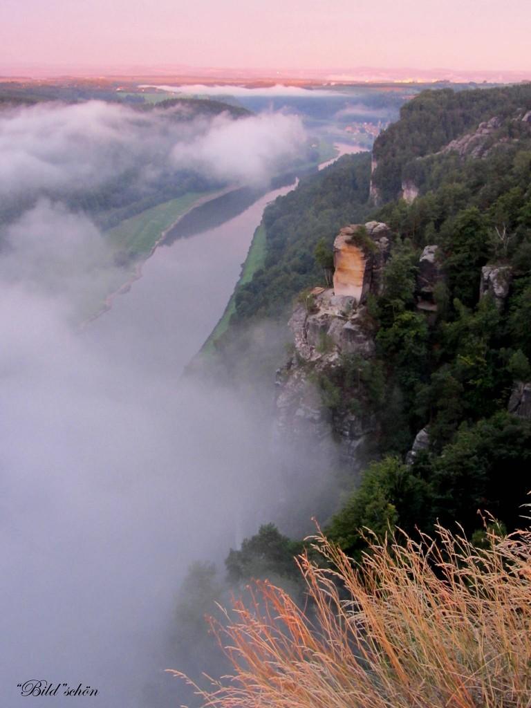 Nebeltage im Elbstandsteingebirge